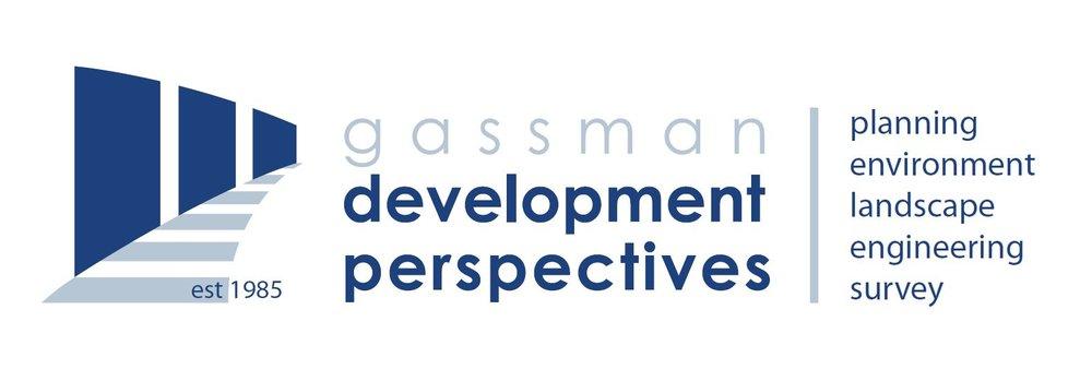 Gassman Development Perspectives 2019.JPG