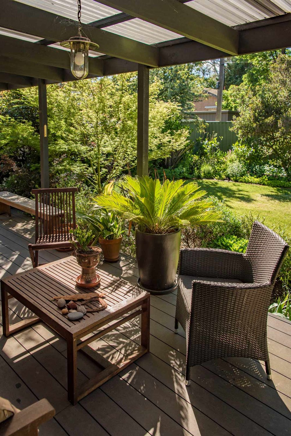 undercover deck, outdoor living overlooking private leafy garden and lawn, cycad in pot, outdoor furniture  | Canberra Gardens