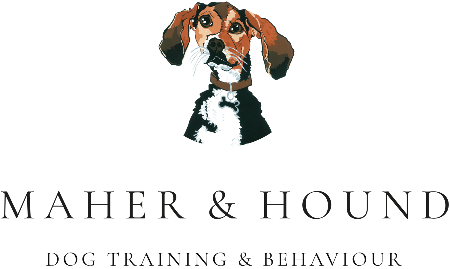 Maher and Hound Dog Training and Behaviour