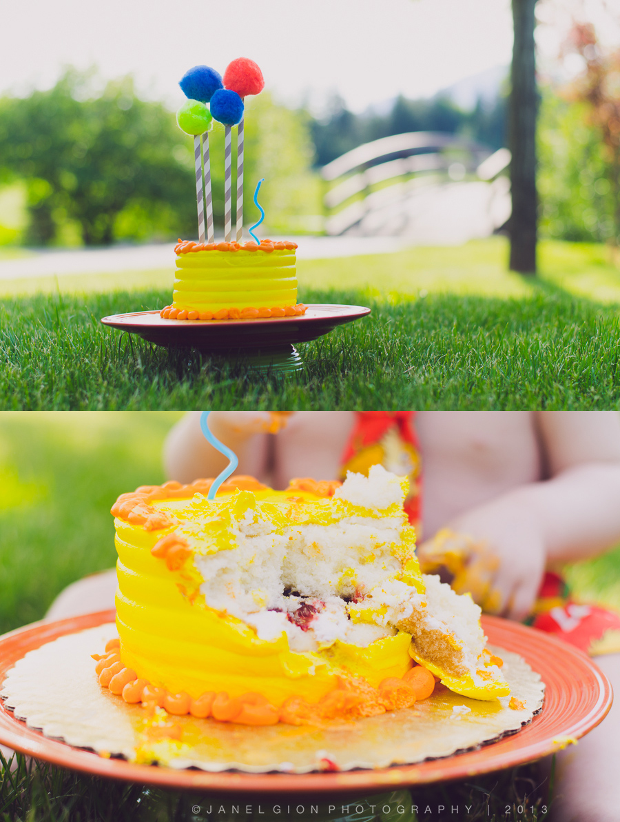 janel-gion-declan-cake-collage-3.jpg