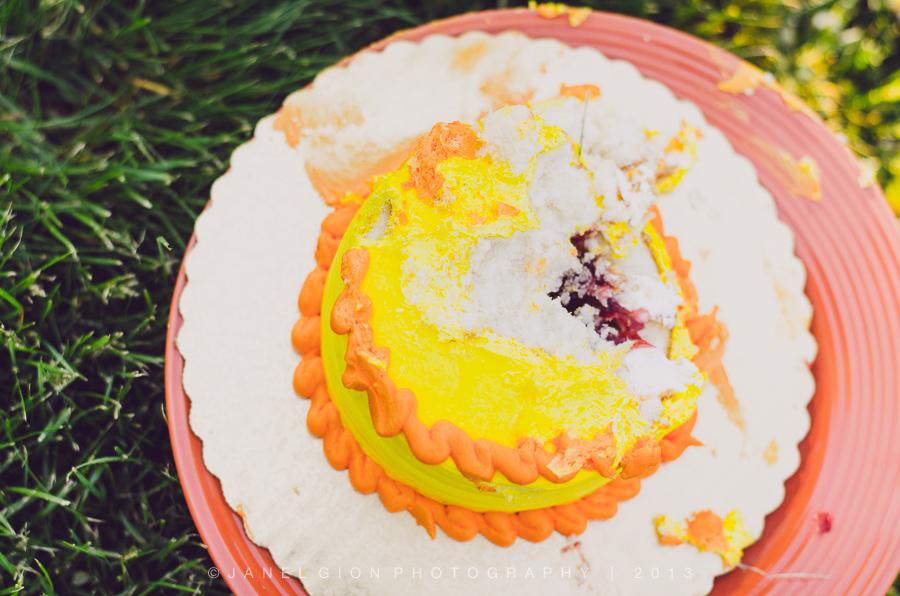 janel-gion-declan-cake-collage-7.jpg