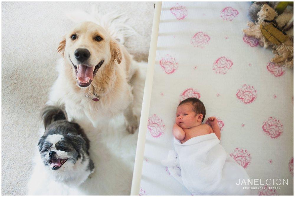 Janel-Gion-Sandpoint-Idaho-Newborn-Photographer_0014.jpg