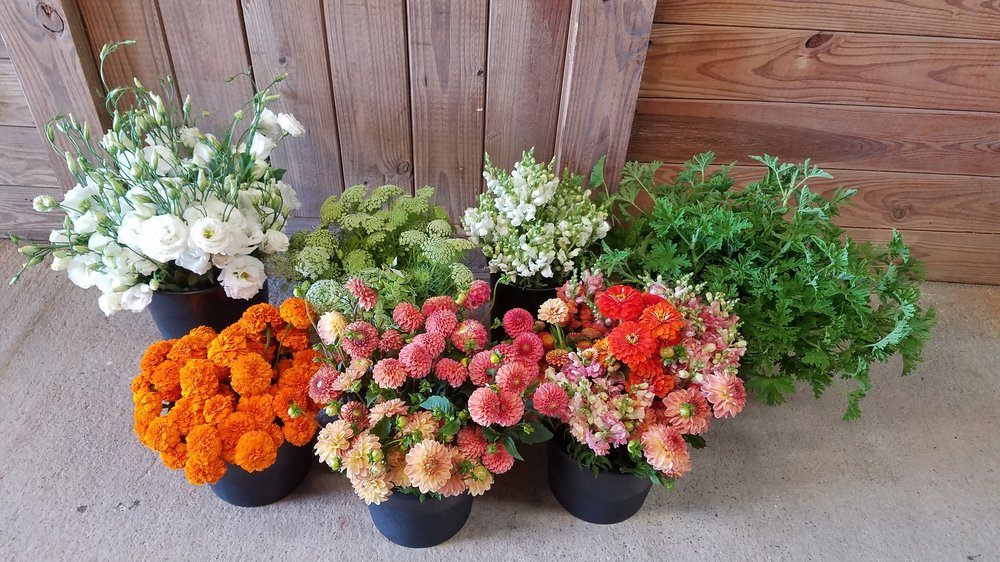 flower-buckets-orange-white-green-colors.jpg