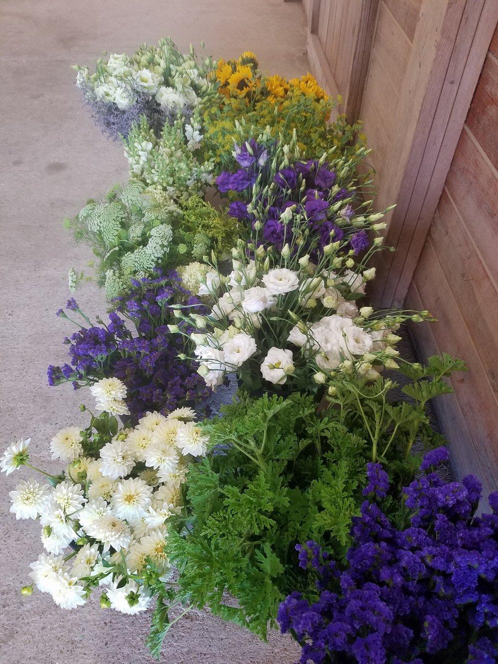 flower-buckets-local-farm.jpg