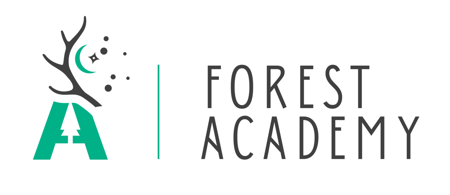 Forest Academy- Outdoor Nature Programs for Children & Adults