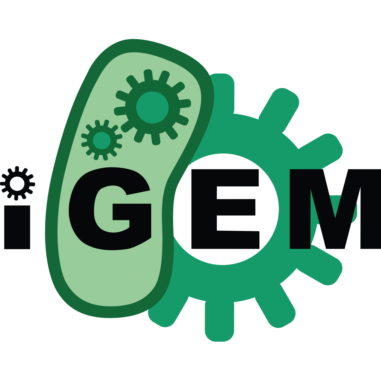 The iGEM Blog
