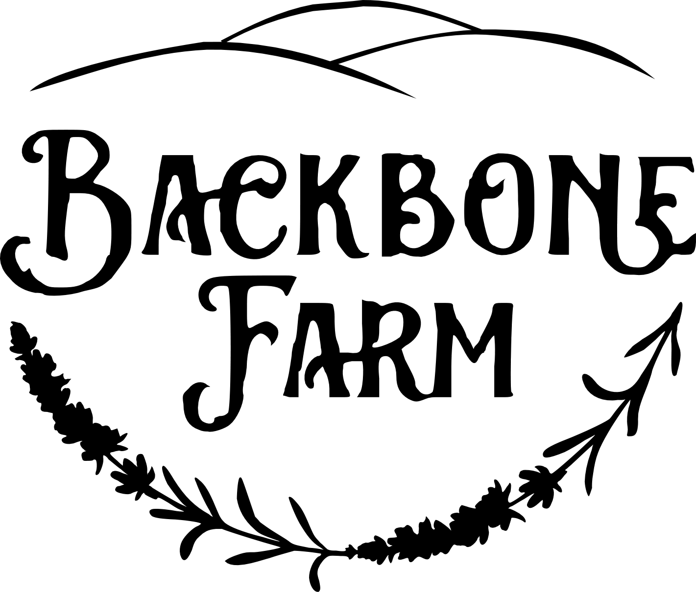 Backbone Farm: Finger Lakes Grass-Fed Beef
