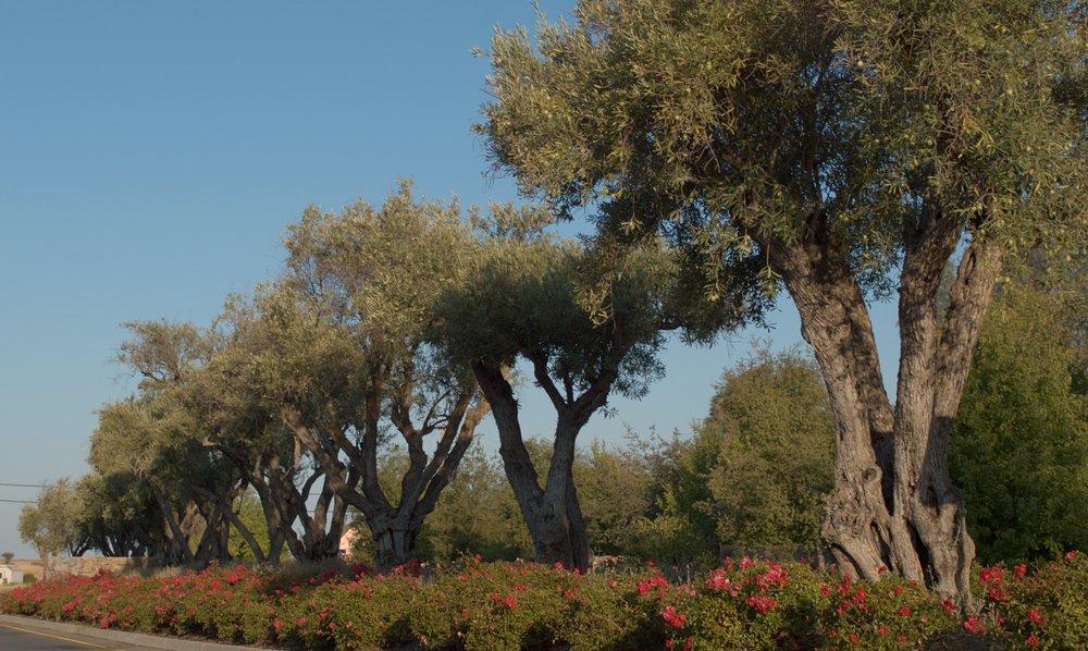 Sierra De Montserrat 3 2500w.jpg