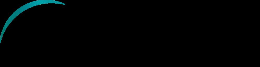 Spacemetric_logo_trans zwarte letters.png