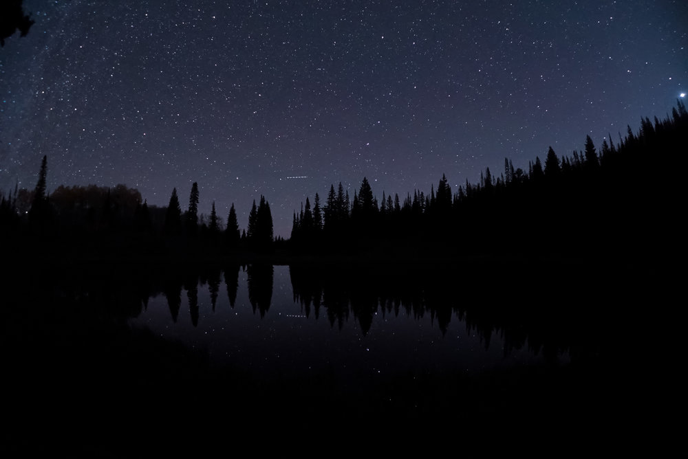 Night009.jpg