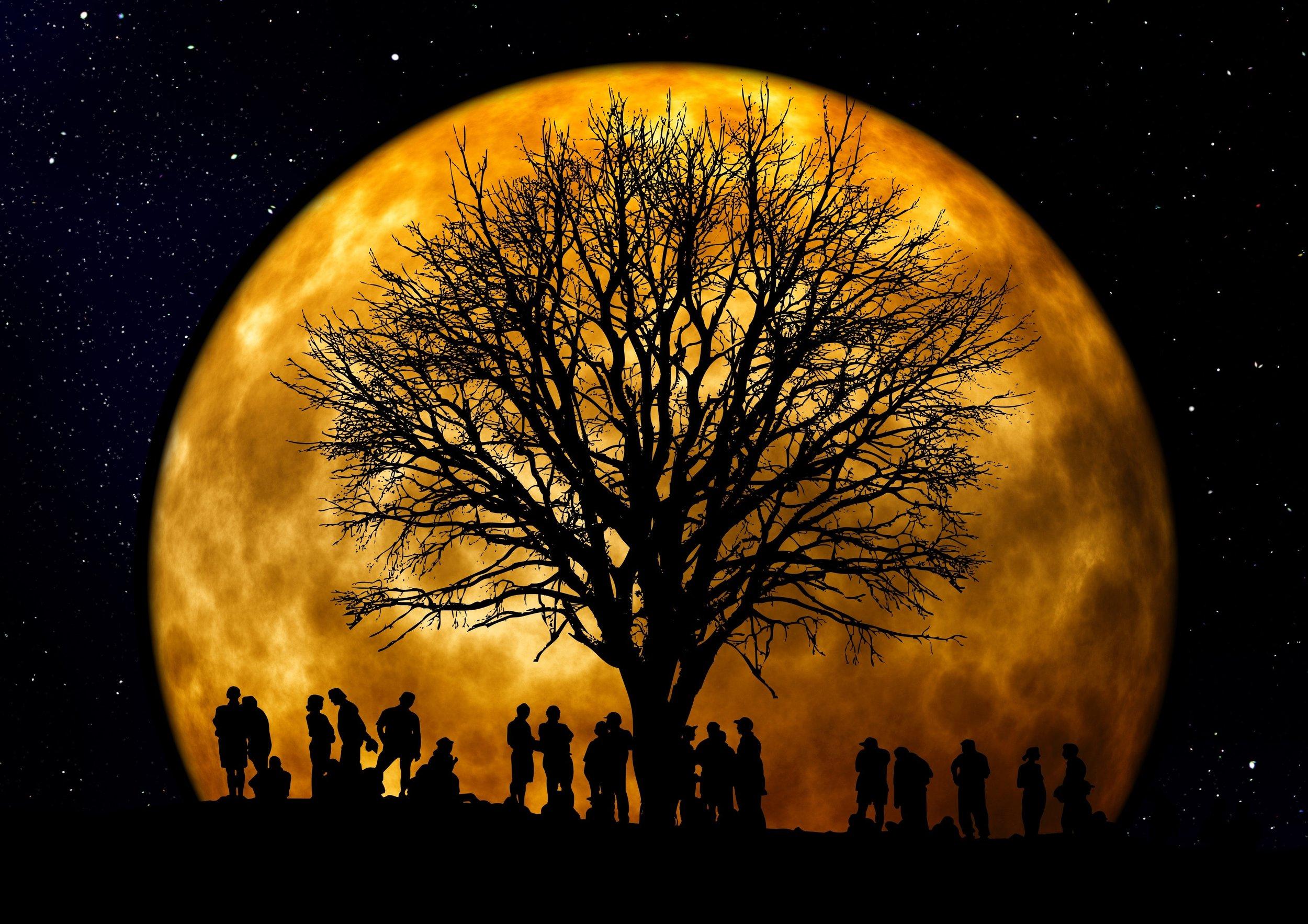 community-dark-full-moon-22138