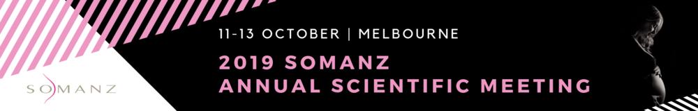 Somanz banner (1).png