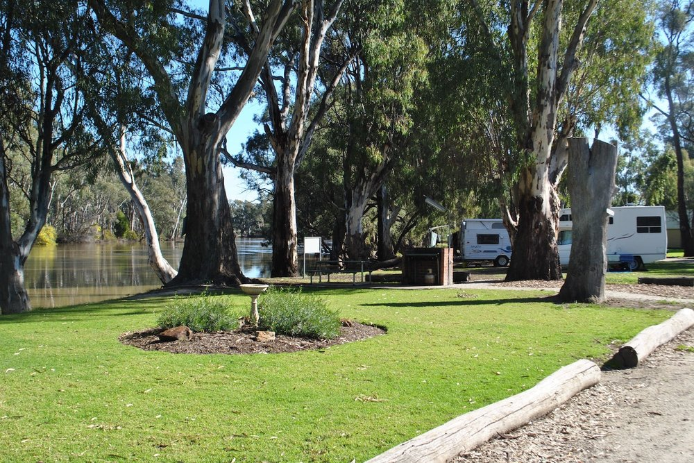 Barham Lakes Caravan Park - Barham Lakes Caravan Park offers the perfect place to stay on the river. Positioned in a natural bush setting, enjoy the peace and tranquillity beside the magnificent red gums.A: East Barham Rd, BarhamP: 03 5453 2009E: stay@blcp.com.auVisit Website