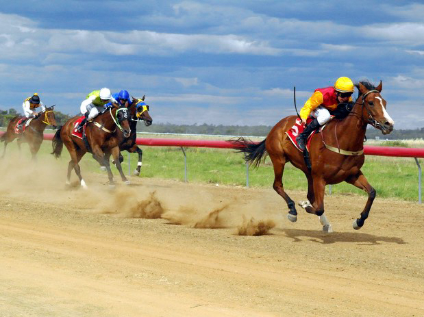 Moulamein Races - Kick up your hooves at the annual Moulamein Races. A day jam packed with racing, fashion & fun for the whole family.Held annually on the second Saturday in December