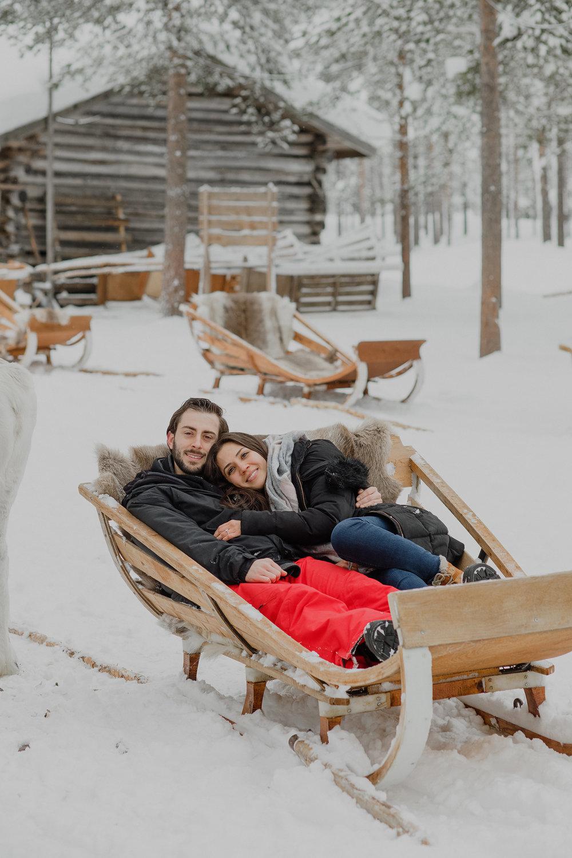 reindeer-rovaniemi-photographer