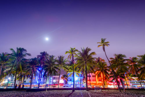 Nightlife-is-key-for-this-Miami-yacht-charter-itinerary-500x334.jpg