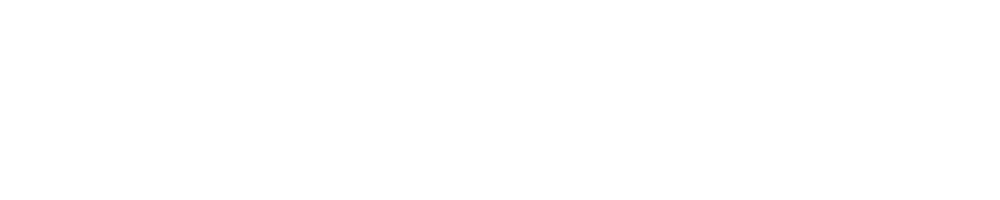 FemtoDX Logo Footer.png