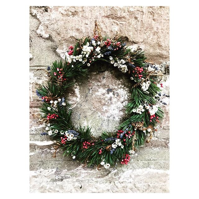 There's only one more space left for our workshop @guardswellfarm this Wednesday December 12 at 10am. Hop into foraging mode and festive cozy-ness with us! . . . . #forage #wreath #wreathmaking #festive #cozy #mincepies