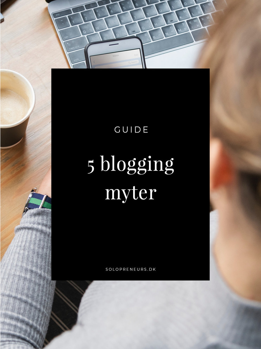 5 blogging myter.jpg
