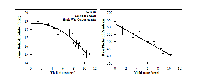 Figure 3A and B. The effect of yield on juice soluble solids (A) and ripe nodes of periderm (B) on 120 node pruned vines at the Cornell Vineyard Laboratory in Fredonia. Each point is the mean of 10 vines, bars=standard error.