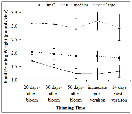 Figure 7. The effect of thinning time on final vine pruning weight of small, medium, and large vines.
