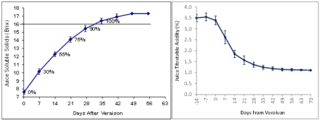 Typical ripening concentration curves of juice soluble solids (left) and juice titratable acidity (right) in Lake Erie Concord.