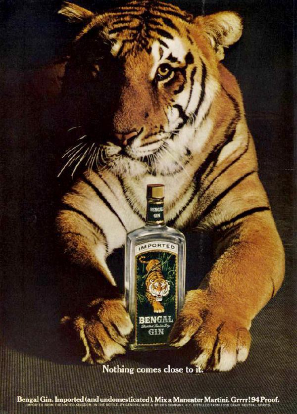 _0003_Bengal Tiger.jpg