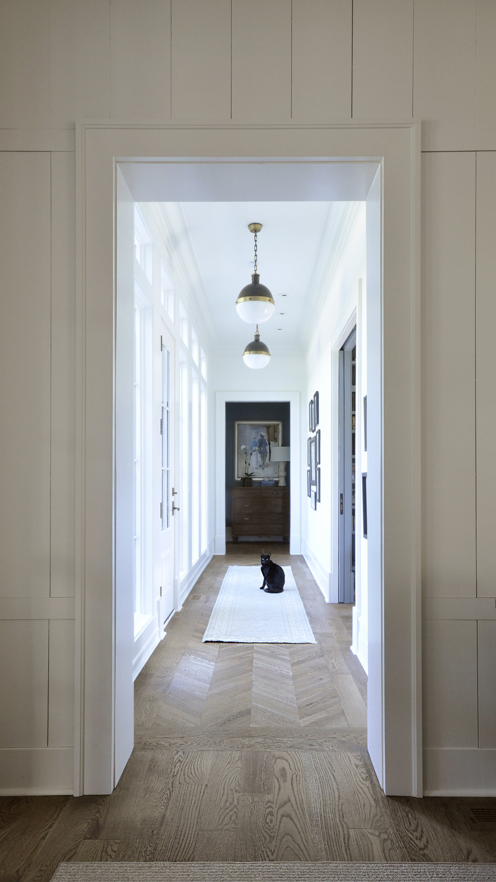 6 Dillard_doorway_cat.jpg