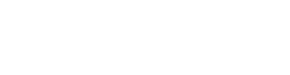 CIS117F-79_E-flex_PARTNER LOGOS_CISCO.png