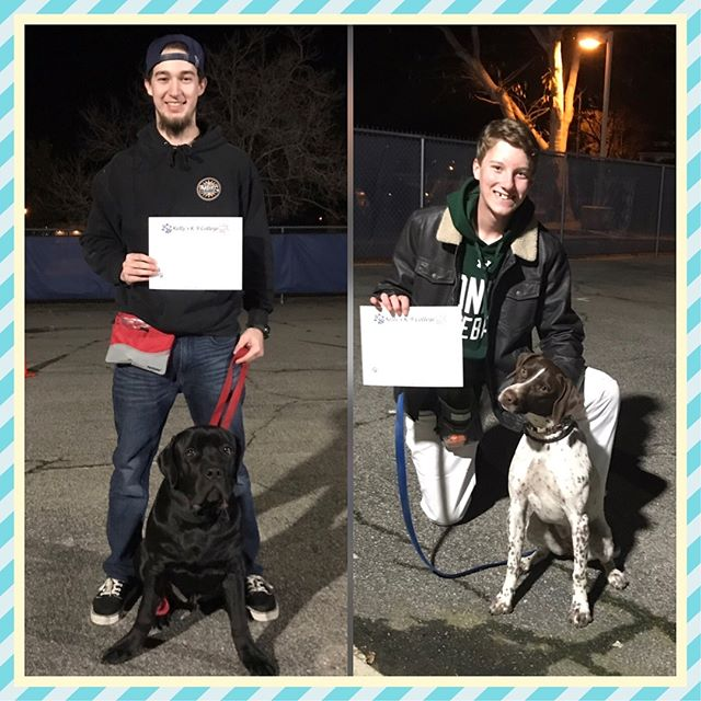 Congratulations to our Intermediate Obedience Class! 🎓🐶🐾 #kellysk9college #dogobedience #dogtraining