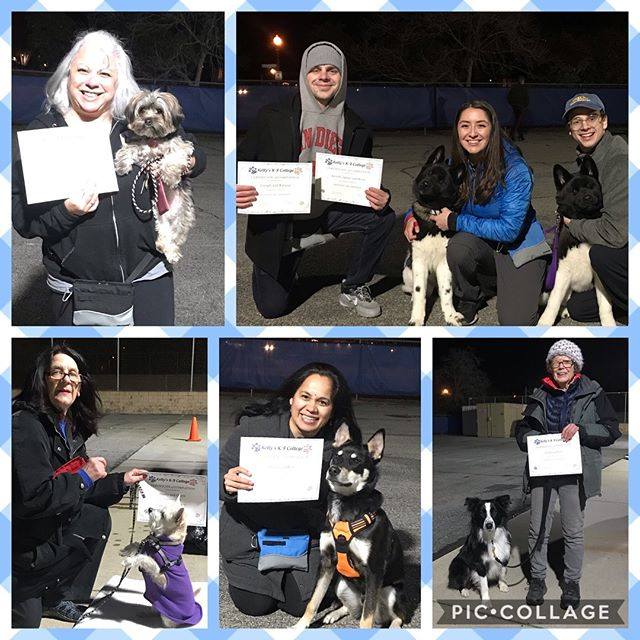 Congratulations to our Beginning Obedience Class! 🎓🐶🐾 #kellysk9college #dogobedience #dogtraining