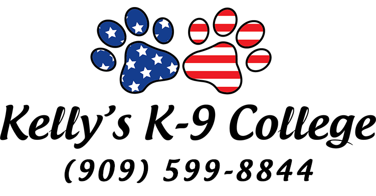 Kelly's K-9 College