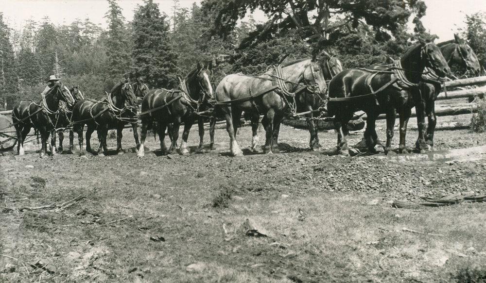 1914-1920s