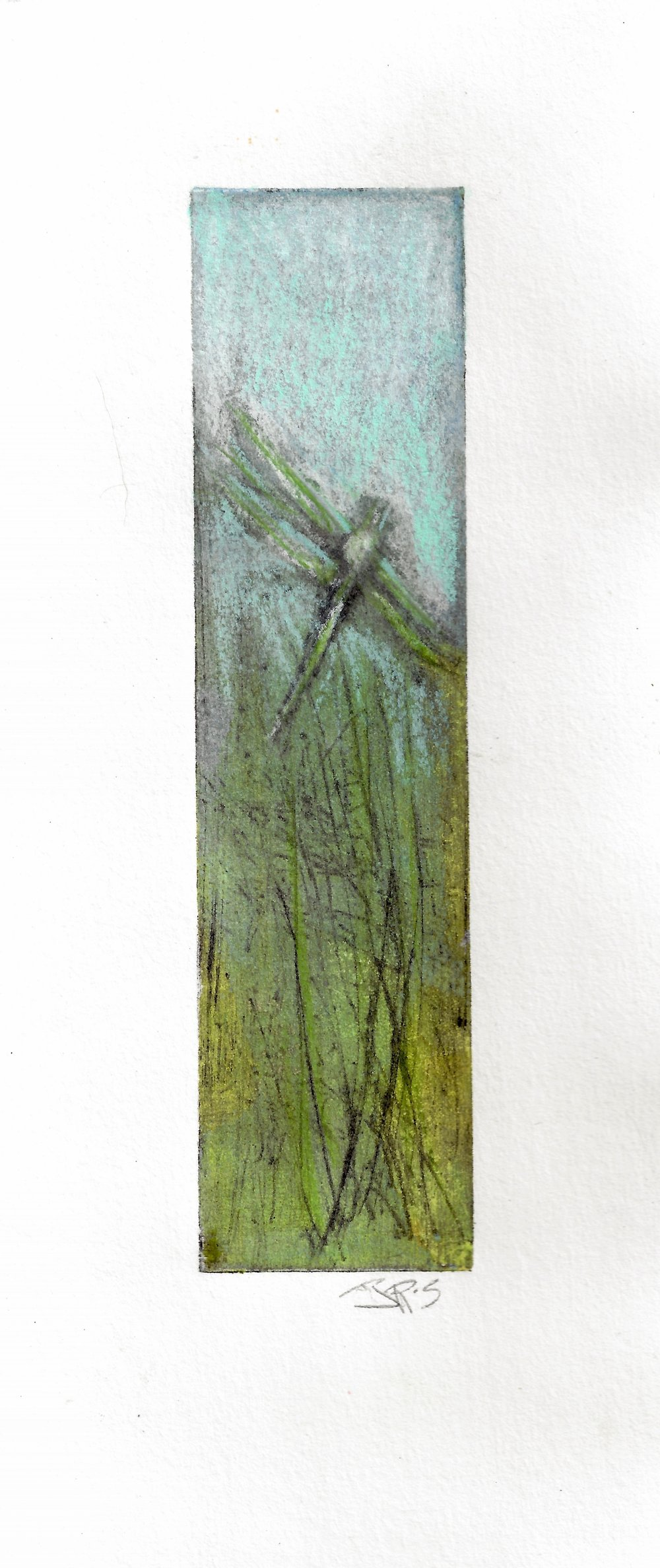 Dragonfly Love - 1/10 Limited Variable Edition