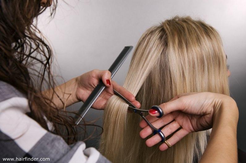 stylist-cutting-hair.jpg