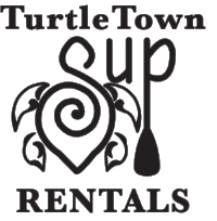 Turtle Town png.png