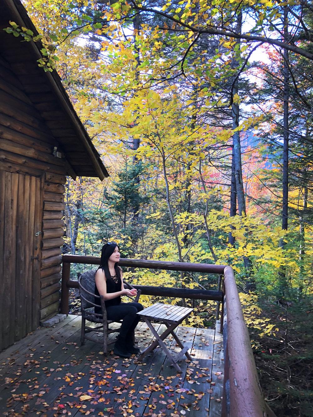Fall Leaves NH 2.jpg