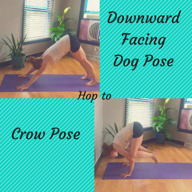 weekly workouts downdog crow burpees