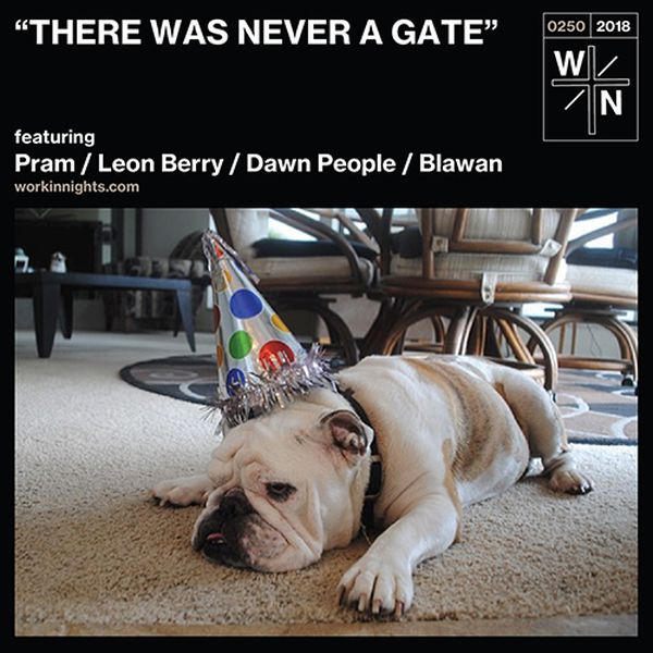 250: THERE WAS NEVER A GATE