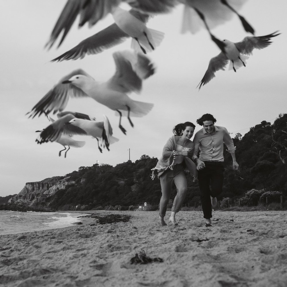 Mornington pre-wedding photographer