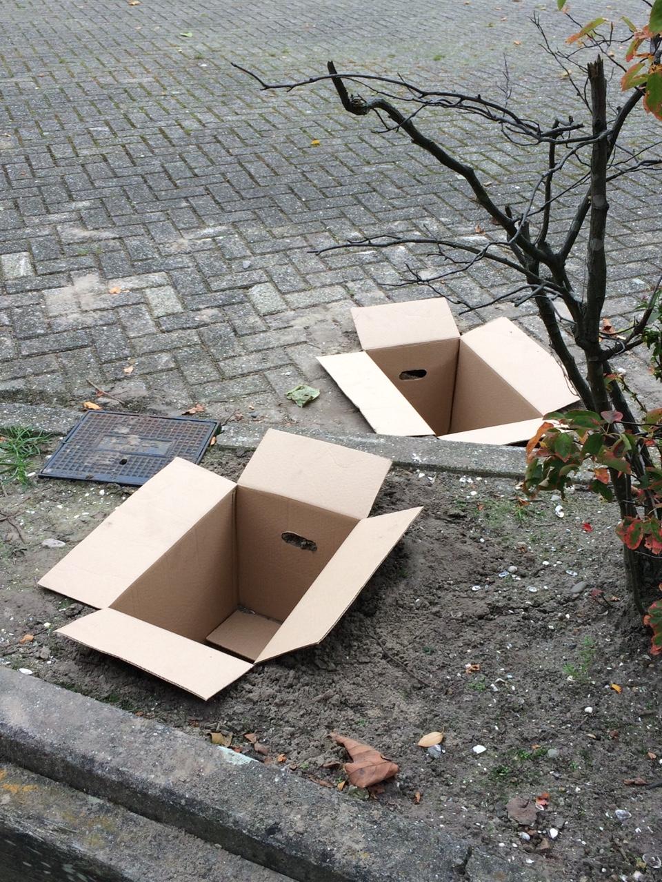 Olle Stjerne - Boxes 2.jpg