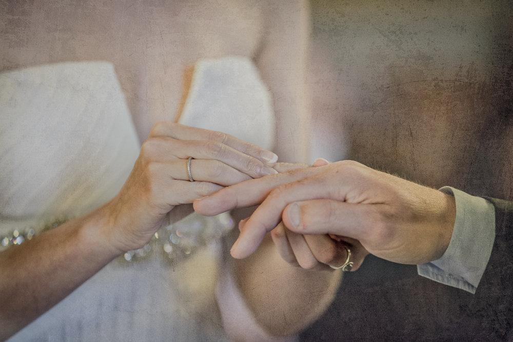 trouw-beveren-verbeke-foundation-huwelijk-4.jpg