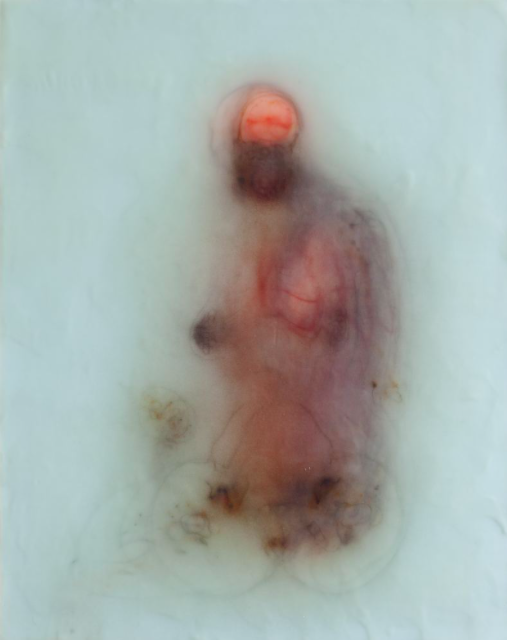 Evelyn, 2012 silk and encaustic on panel, 20 x 16 in.
