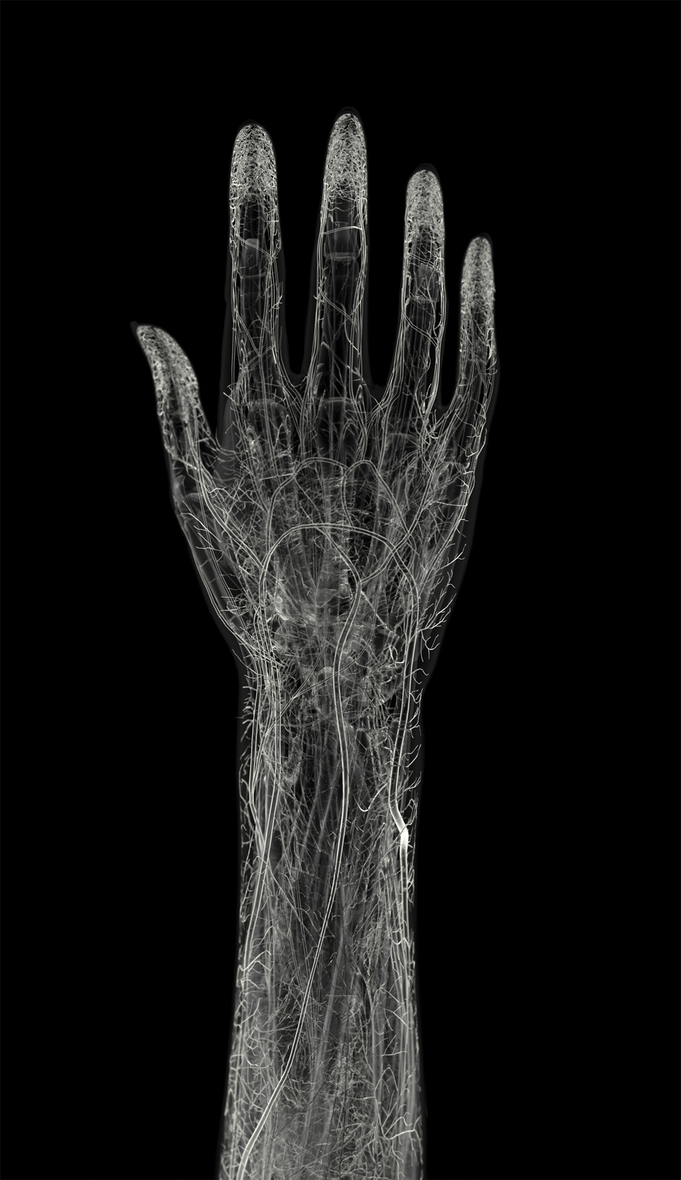 MensHealth_hand_final.jpg