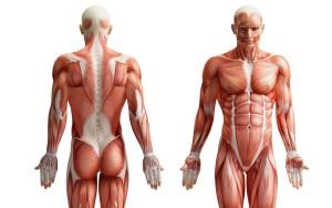 Deep Tissue Massage or Rolfing Austin TX