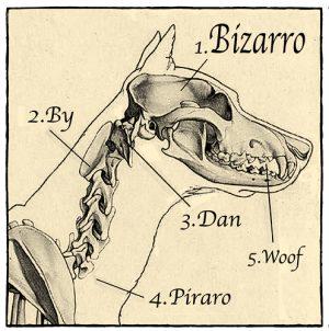 Bizarro-05-31-09-HdrWB-300x302.jpg