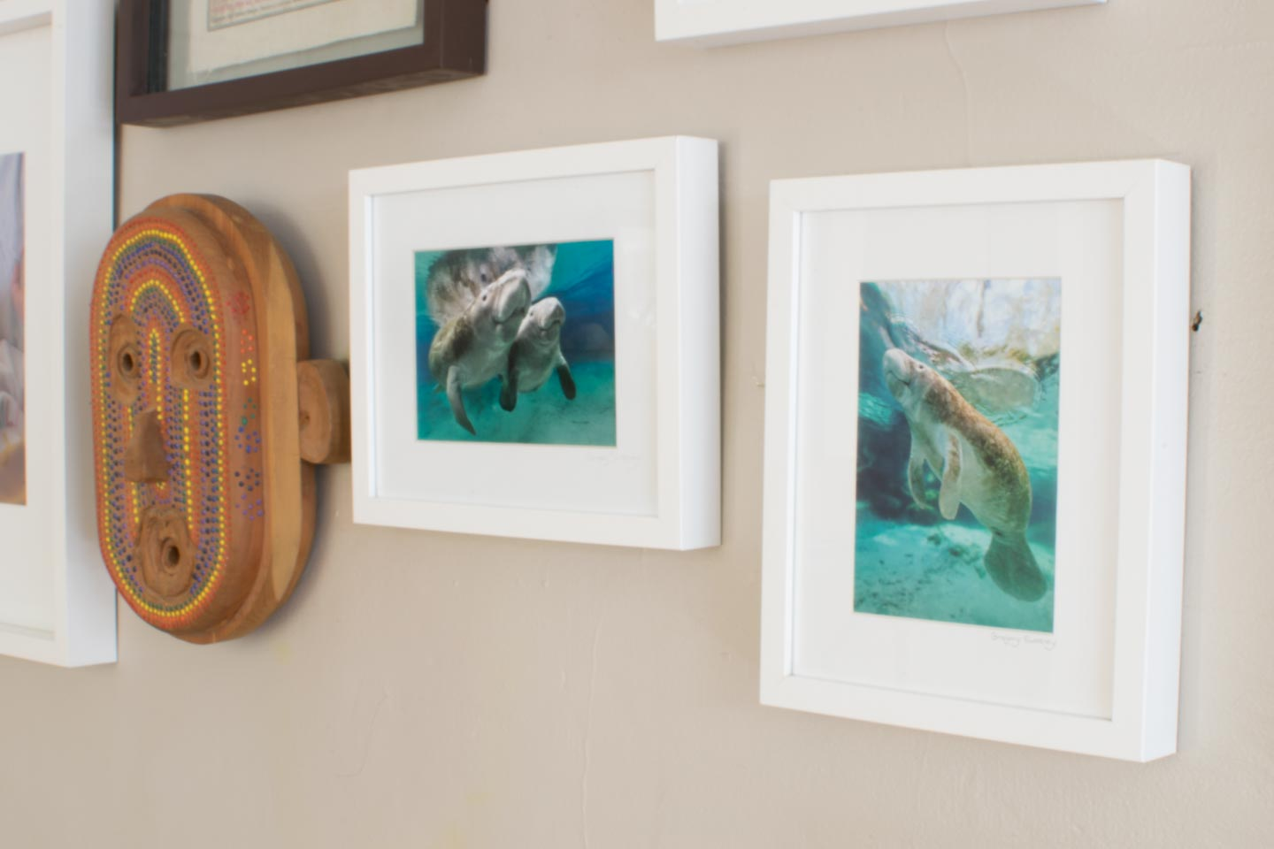 gallery wall manatee prints