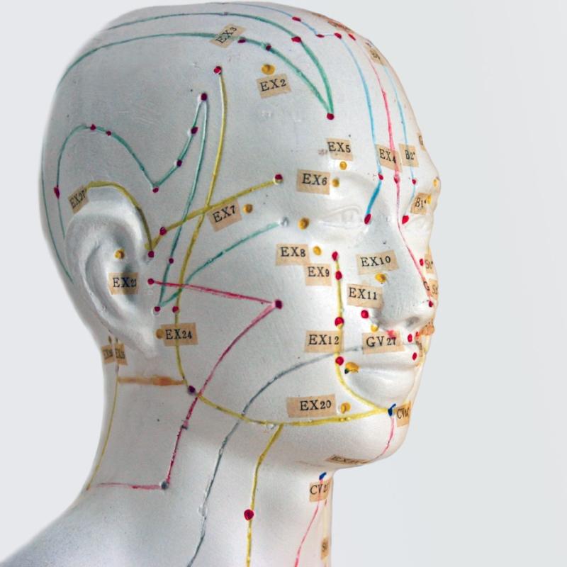newpaltz-acupuncture-model-chinese-medicine.jpeg