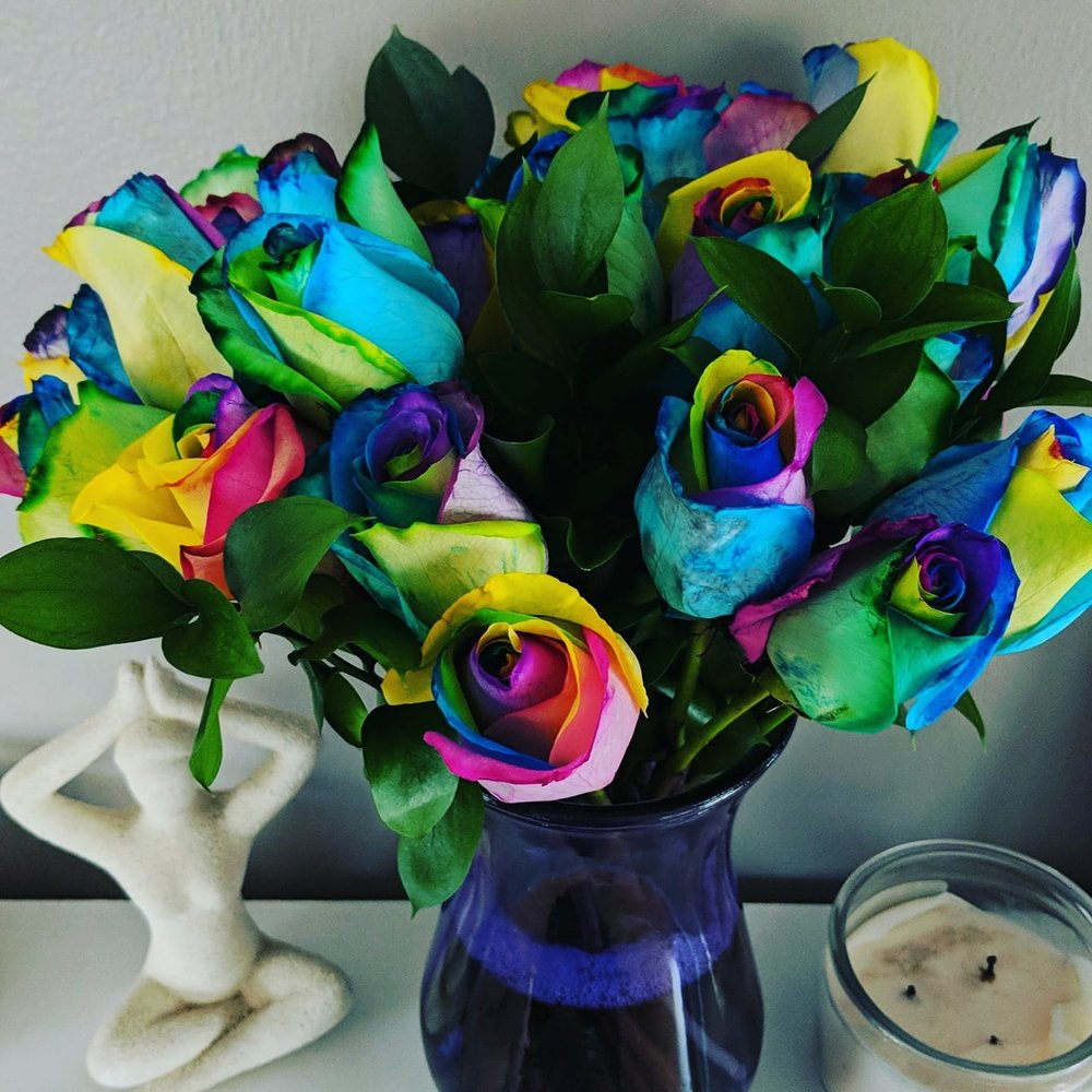These lovely rainbow roses were sent to me by my lovely Speculator CPs!