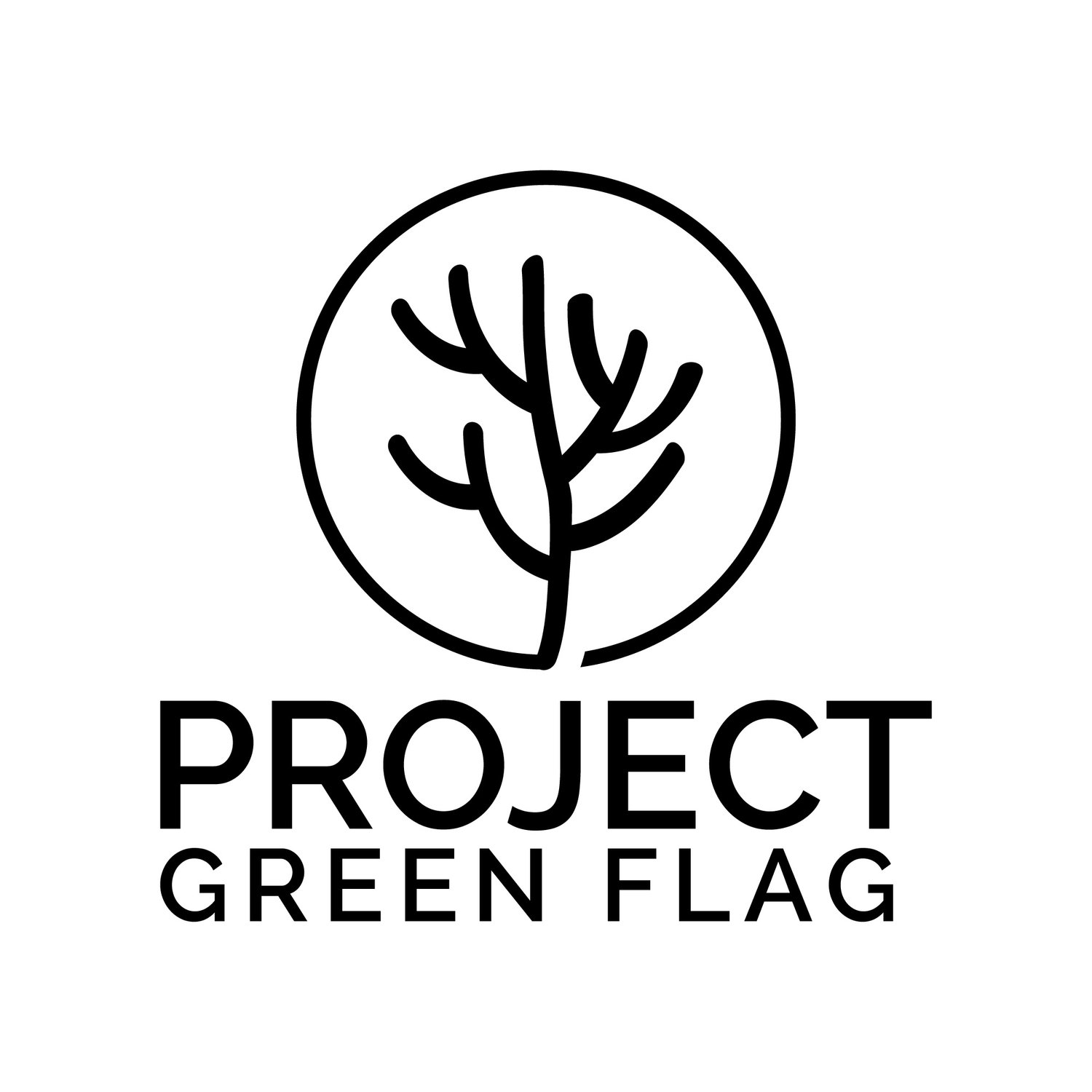 Project Green Flag